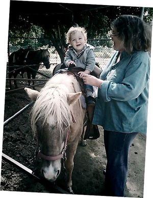 Charlie-pony2